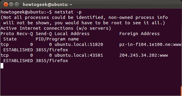 linux_network_netstat_2